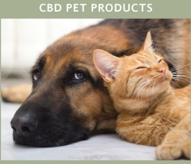 Cbd Pet Products Ctfo Products
