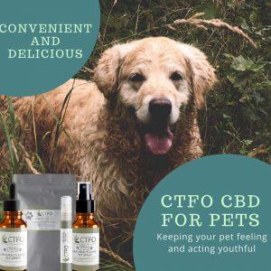 CTFO CBD For Pets